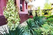 Гостевой дом «На Терновой»