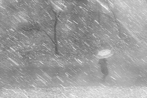 Погода в береговом бахчисарайский район на 14