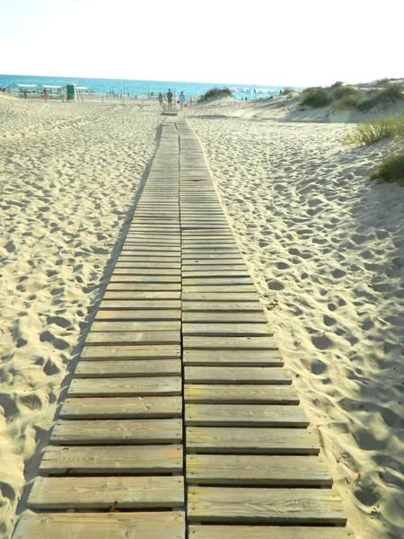 Фото пляжа Анапы и дорожка к морю