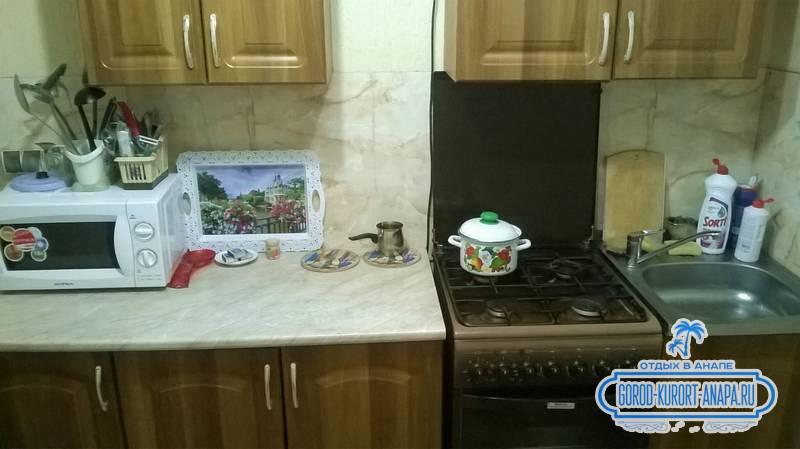 оборудованная  кухня в гостевом доме на 40 Лет Победы