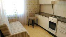 Однокомнатная квартира на «Ленина 15» - подробное описание