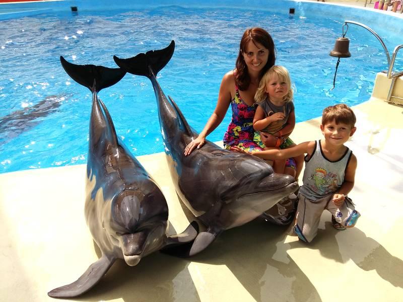 Дельфины в дельфинарии Большой утриш