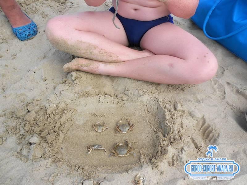 Наш малой играется с морскими существами